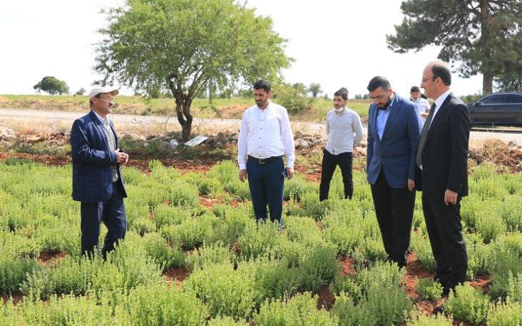 Başkan Örki'den Çiftçilere Moral