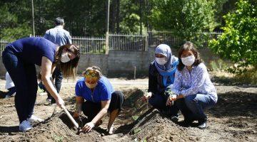 Kent Konseyinden yeni normalde ilk proje hobi bahçesi