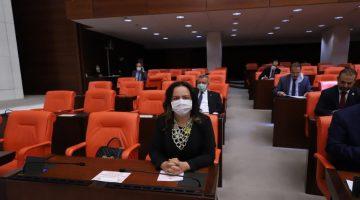 AK Parti Denizli Milletvekili Nilgün Ök Yasalaşan Kanunlarla İlgili Açıklama Yaptı