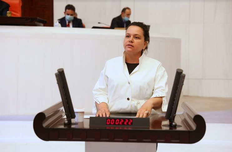 AK Parti Denizli Milletvekili Nilgün ÖK TBMM'de söz aldı