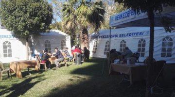İzmirli Depremzedelere Destek Devam Ediyor