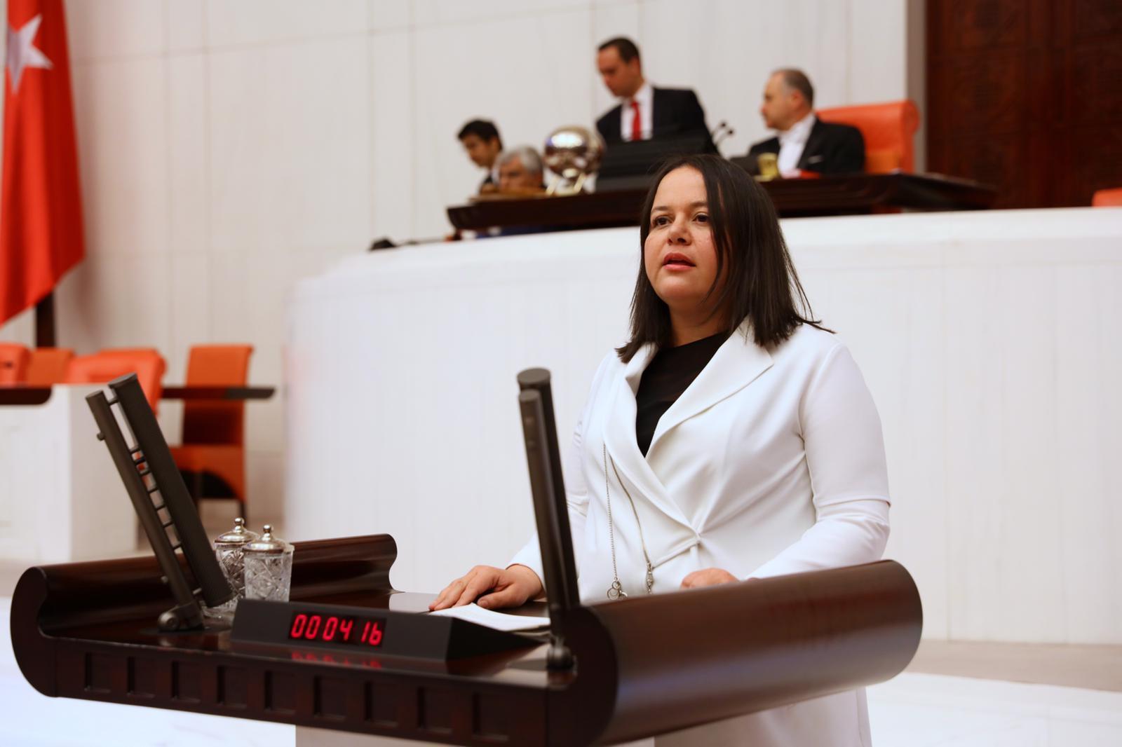 Milletvekili Nilgün ÖK, 2021 Yılı Bütçesini Değerlendirdi