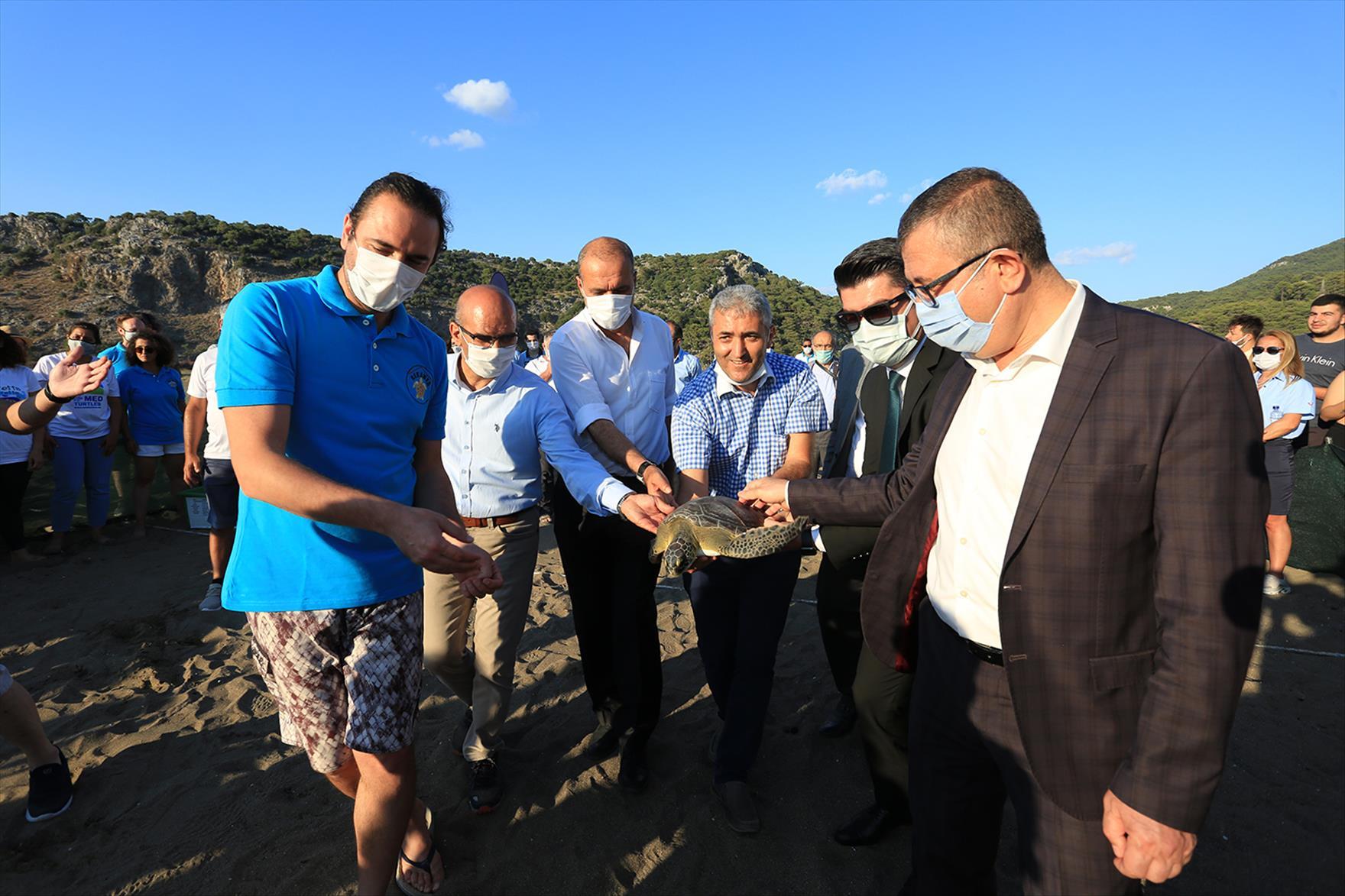 Dünya Deniz Kaplumbağaları Günü'nde Denize Bırakıldılar